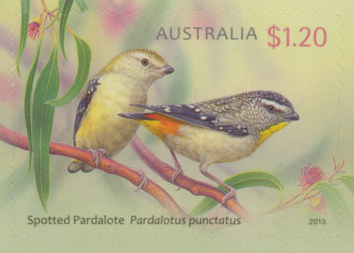 2013: Australian Birds - Pardalotes Self-adhesive from sheetlet