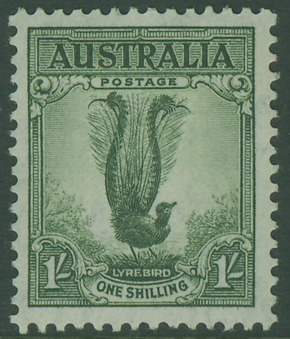 SG174 1/- Grey-Green Superb Lyrebird bird