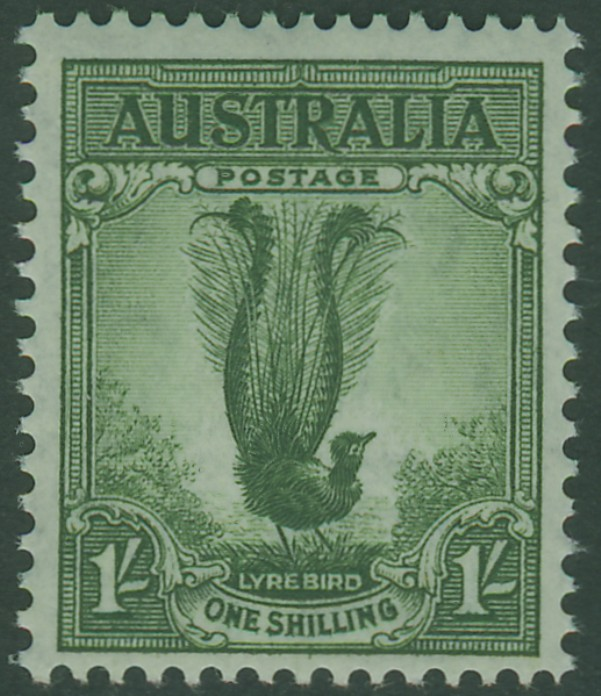 SG192 1/- Grey-Green Superb Lyrebird bird