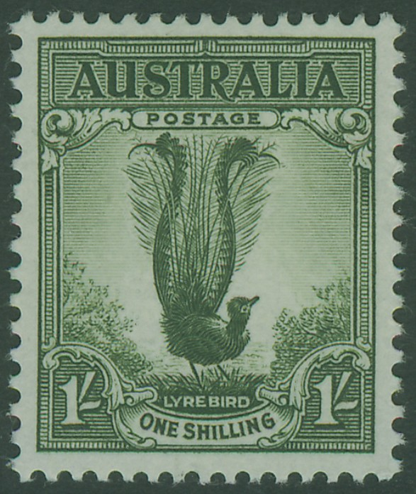 SG230d 1/- Grey-Green Superb Lyrebird bird